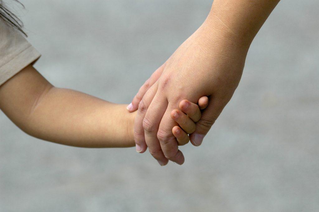 フラクタル家族関係